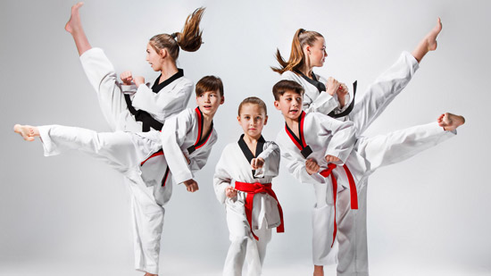 Martial Arts And Black Belt Program Narre Warren, Cranbourne And Berwick