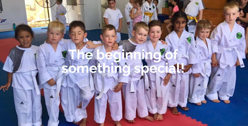 SES TAEKWONDO Black Belt 6 months Program